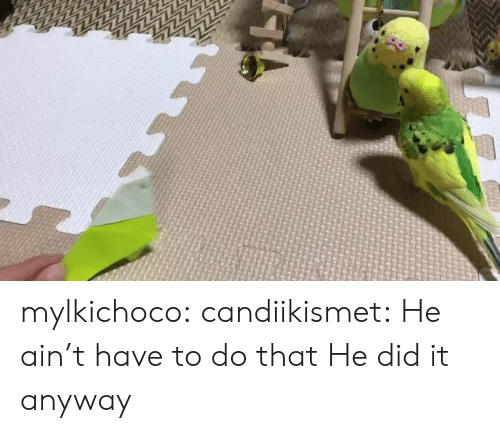 Tumblr, Blog, and Http: mylkichoco:  candiikismet: He ain't have to do that He did it anyway