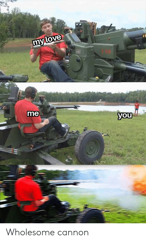 Wholesome, Cannon, and You: myllove  me  you Wholesome cannon