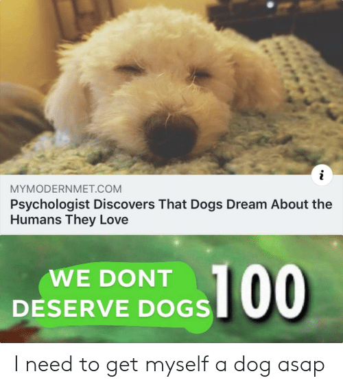 Dogs, Love, and Dog: MYMODERNMET.COM  Psychologist Discovers That Dogs Dream About the  Humans They Love  WE DONT  DESERVE DOGS I need to get myself a dog asap