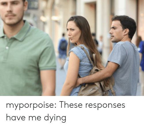 Me Dying: myporpoise:  These responses have me dying