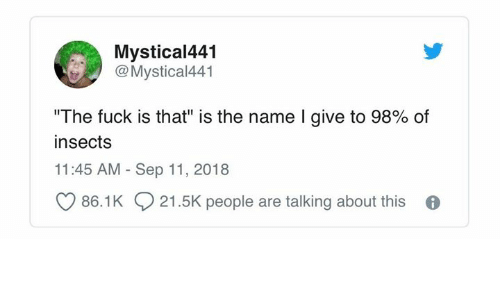 "Fuck, Humans of Tumblr, and Name: Mystical441  Mystical441  ""The fuck is that"" is the name I give to 98% of  insects  11:45 AM Sep 11, 2018  86.1K 21.5K people are talking about this 6"