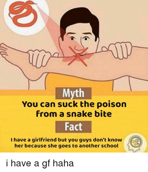 School, Snake, and Girlfriend: Myth  You can suck the poison  from a snake bite  Fact  I have a girlfriend but you guys don't know  her because she goes to another school i have a gf haha