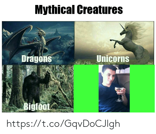 unicorns: Mythical Creatures  Unicorns  Dragons  Bigfoot https://t.co/GqvDoCJlgh