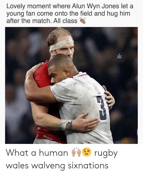 wales: n Jones let a  Lovely moment where Alun Wy  young fan come onto the field and hug him  after the match. All class  RUGBY  MEMES What a human 🙌🏽😉 rugby wales walveng sixnations