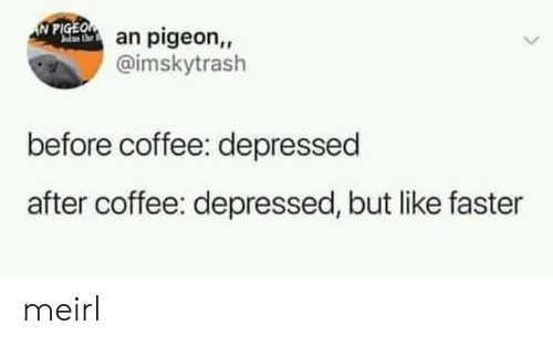 Coffee, MeIRL, and Pigeon: N PIGEOan pigeon,,  alas he  @imskytrash  before coffee: depressed  after coffee: depressed, but like faster meirl