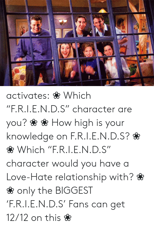 "how high: NA activates:    ❀ Which ""F.R.I.E.N.D.S"" character are you? ❀   ❀ How high is your knowledge on   F.R.I.E.N.D.S? ❀       ❀  ​Which ""F.R.I.E.N.D.S"" character would you have a Love-Hate relationship with?   ❀        ❀  only the BIGGEST 'F.R.I.E.N.D.S' Fans can get 12/12 on this   ❀"