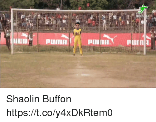 Memes, Puma, and 🤖: NA  PUMA Shaolin Buffon https://t.co/y4xDkRtem0