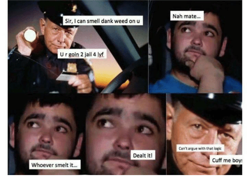 smelt: Nah mate...  Sir, I can smell dank weed on u  U r goin 2 jail 4 lyf  Can't argue with that logic  Dealt it!  Cuff me boy  Whoever smelt it...