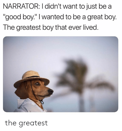 """Memes, Good, and Boy That: NARRATOR: I didn't want to just be a  """"good boy."""" I wanted to be a great boy.  The greatest boy that ever lived. the greatest"""