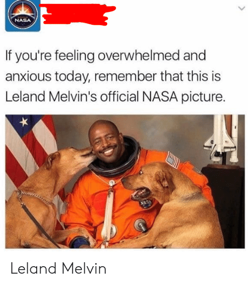 Nasa, Today, and Melvins: NASA  If you're feeling overwhelmed and  anxious today, remember that this is  Leland Melvin's official NASA picture. Leland Melvin