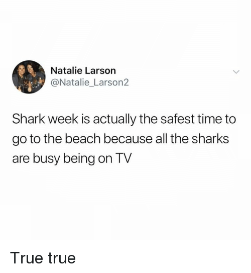 Dank, True, and Shark: Natalie Larson  @Natalie_ Larson2  Shark week is actually the safest time to  go to the beach because all the sharks  are busy being on TV True true