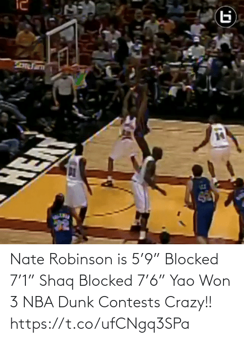 "memes: Nate Robinson is 5'9"" Blocked 7'1"" Shaq Blocked 7'6"" Yao  Won 3 NBA Dunk Contests  Crazy!!   https://t.co/ufCNgq3SPa"