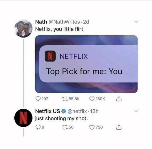 Memes, Netflix, and 🤖: Nath @NathWrites 2d  Netflix, you little flirt  N NETFLIX  Top Pick for me: You  Netflix US@netflix 13h  just shooting my shot.  で,  9  750