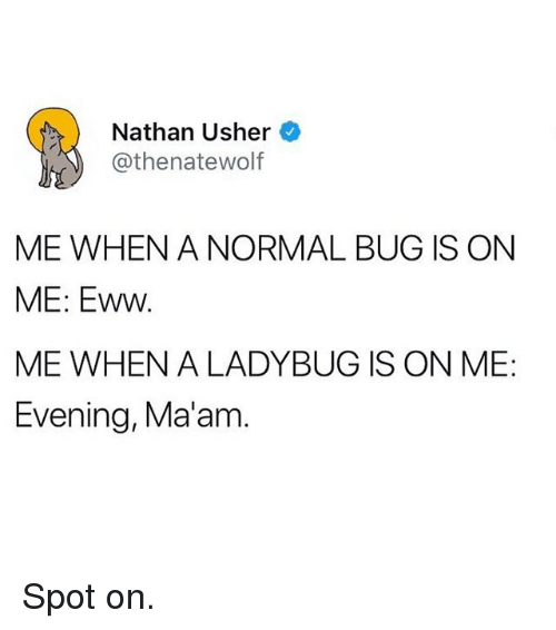 Funny, Usher, and Bug: Nathan Usher  @thenatewolf  ME WHEN A NORMAL BUG IS ON  ME: Eww  ME WHEN A LADYBUG IS ON ME:  Evening, Ma'am Spot on.
