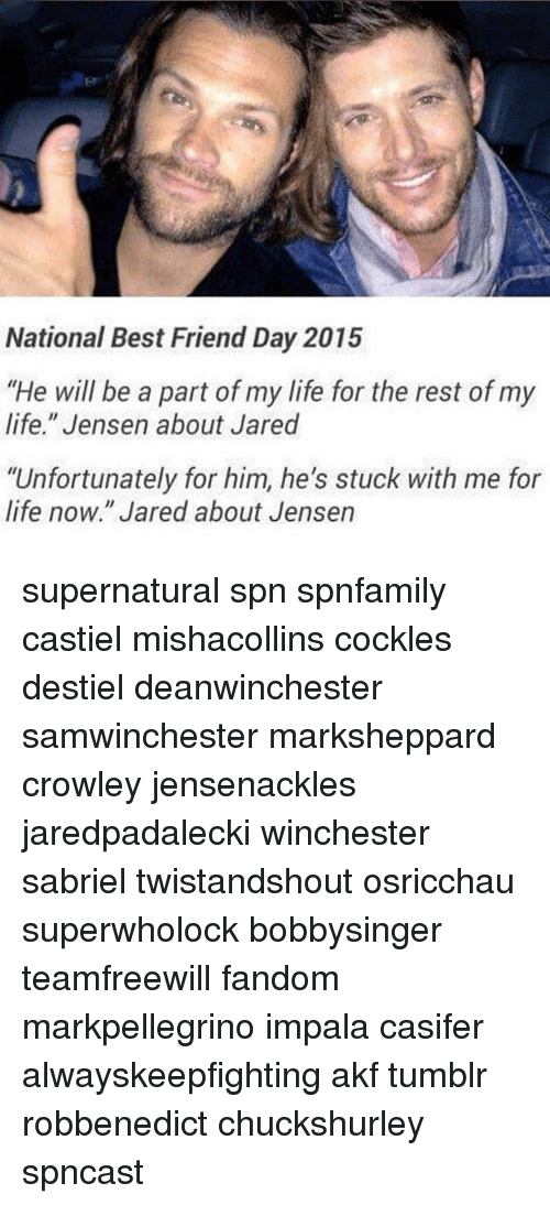 "best friend day: National Best Friend Day 2015  ""He will be a part of my life for the rest of my  life."" Jensen about Jared  ""Unfortunately for him, he's stuck with me for  life now."" Jared about Jensen supernatural spn spnfamily castiel mishacollins cockles destiel deanwinchester samwinchester marksheppard crowley jensenackles jaredpadalecki winchester sabriel twistandshout osricchau superwholock bobbysinger teamfreewill fandom markpellegrino impala casifer alwayskeepfighting akf tumblr robbenedict chuckshurley spncast"
