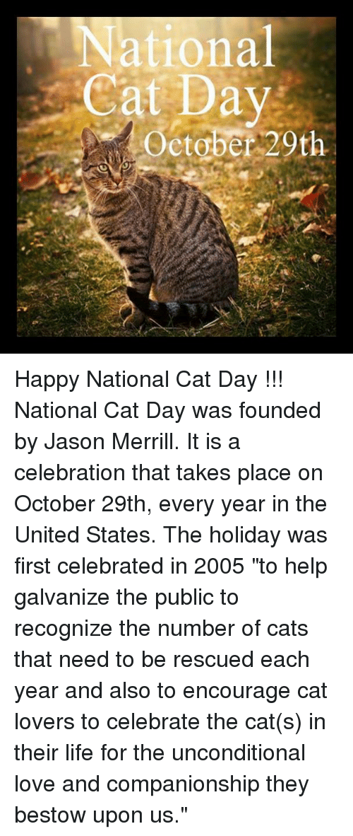 """Life, Love, and Memes: National  Cat Day  October 20th Happy National Cat Day !!!  National Cat Day was founded by Jason Merrill. It is a celebration that takes place on October 29th, every year in the United States. The holiday was first celebrated in 2005 """"to help galvanize the public to recognize the number of cats that need to be rescued each year and also to encourage cat lovers to celebrate the cat(s) in their life for the unconditional love and companionship they bestow upon us."""""""