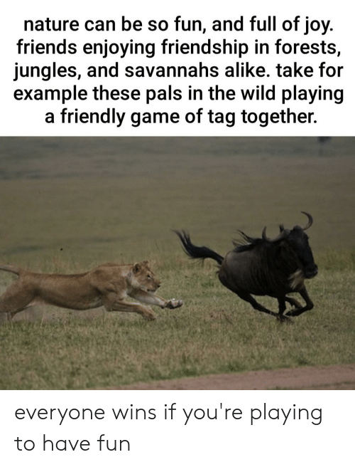 Jungles: nature can be so fun, and full of joy.  friends enjoying friendship in forests,  jungles, and savannahs alike. take for  example these pals in the wild playing  friendly game of tag together.  а everyone wins if you're playing to have fun