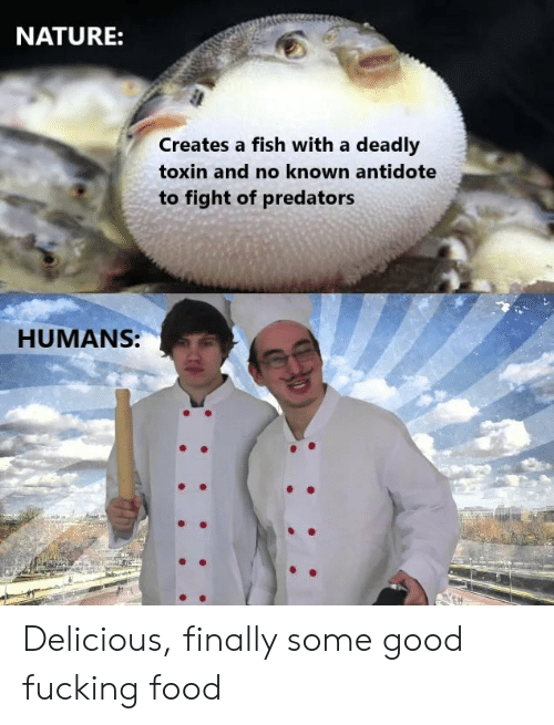 Some Good Fucking Food: NATURE:  Creates a fish with a deadly  toxin and no known antidote  to fight of predators  HUMANS: Delicious, finally some good fucking food