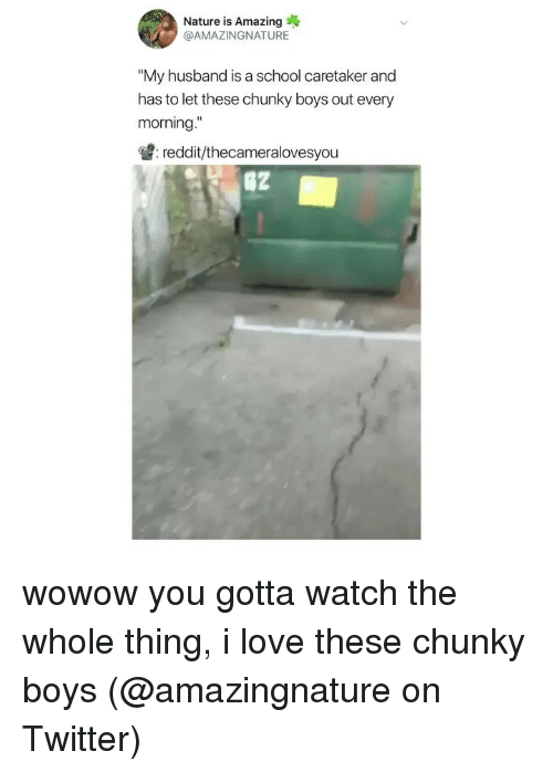 "Love, Memes, and Reddit: Nature is Amazing  @AMAZINGNATURE  ""My husband is a school caretaker and  has to let these chunky boys out every  morning  : reddit/thecameralovesyou wowow you gotta watch the whole thing, i love these chunky boys (@amazingnature on Twitter)"