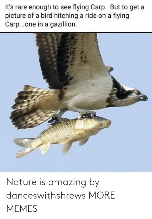 Nature: Nature is amazing by danceswithshrews MORE MEMES