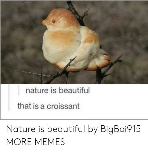Nature Is Beautiful: nature is beautiful  that is a croissant Nature is beautiful by BigBoi915 MORE MEMES