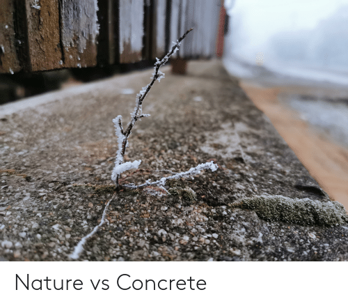 concrete: Nature vs Concrete