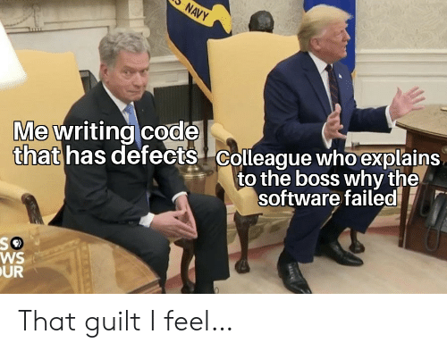 software: NAVY  that has defects Colleague who explains  to the boss why the  Me writing code  software failed  WS  UR That guilt I feel…