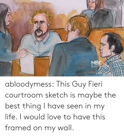 Guy Fieri, Life, and Love: NB  BAY abloodymess:   This Guy Fieri courtroom sketch is maybe the best thing I have seen in my life. I would love to have this framed on my wall.