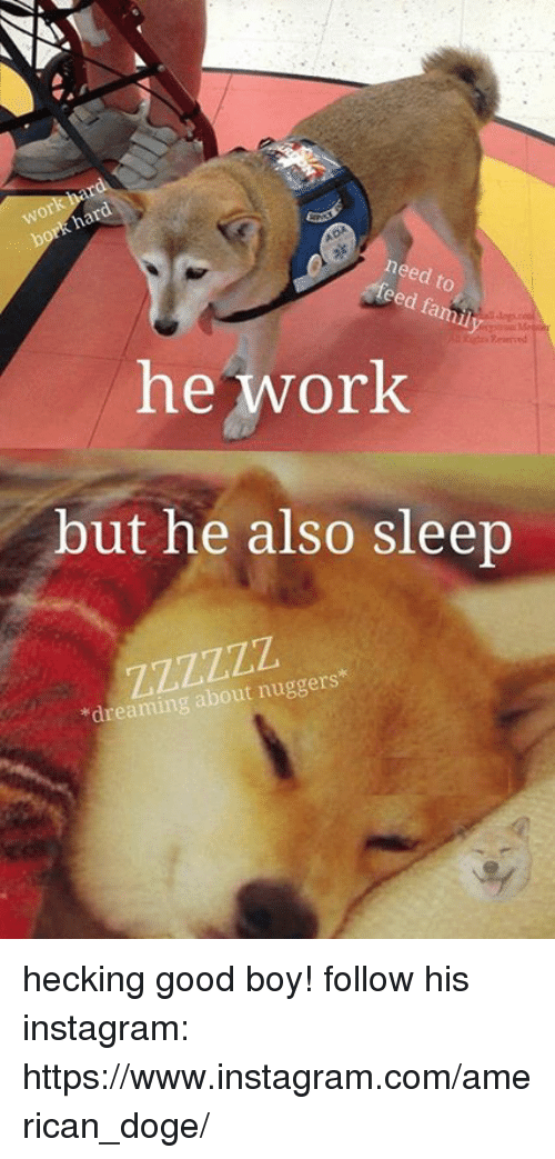 doges: need to  eed famil  he work  but he also Sleep  dreaming about nuggers hecking good boy! follow his instagram: https://www.instagram.com/american_doge/