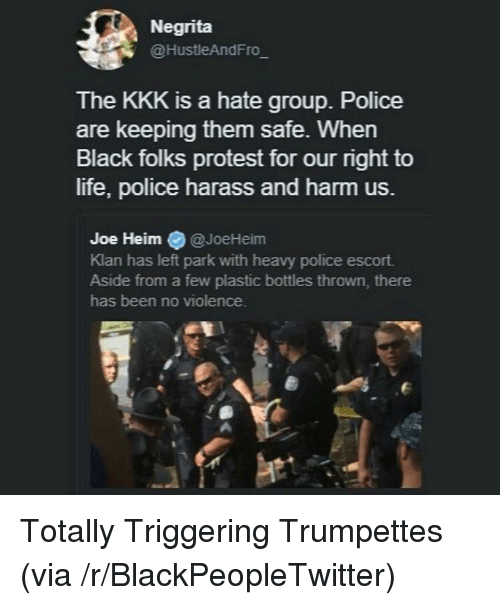 hate group: Negrita  @HustleAndFro  The KKK is a hate group. Police  are keeping them safe. When  Black folks protest for our right to  life, police harass and harm us.  Joe Heim @JoeHeim  Klan has left park with heavy police escort.  Aside from a few plastic bottles thrown, there  has been no violence. <p>Totally Triggering Trumpettes (via /r/BlackPeopleTwitter)</p>