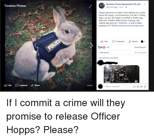 """Bad, Crime, and Easter: neline Photos  Spokane Police Department K9 Unit  Like This Page . April 1 .  Please welcome our latest crime-fighting tool, police  bunny B9 Hopps. Unconventional, you say? Cutting  edge, we say. B9 Hopps is certified in Easter egg  detection, stealthy albeit bouncy tracking, and  making bad guys go, """"What the-- is that a rabbit  chasing me?"""" #badbunsbadbunswhatchagonnado  Like Comment Share  Chronological  1,408 Shares  247 Comments  View previous comments  1 GIF İ  Who's that then?  cD Like  -Comment  、Share  Options  Write a comment... If I commit a crime will they promise to release Officer Hopps? Please?"""