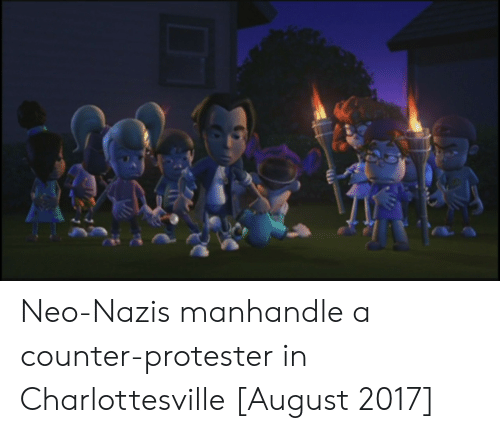 Protester: Neo-Nazis manhandle a counter-protester in Charlottesville [August 2017]