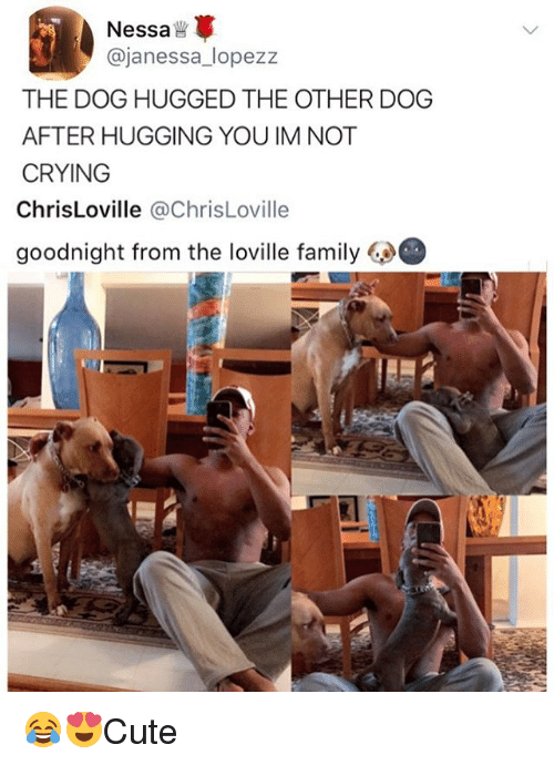 dogged: Nessa  @janessa_lopezz  THE DOG HUGGED THE OTHER DOG  AFTER HUGGING YOU IM NOT  CRYING  ChrisLoville @ChrisLoville  goodnight from the loville family 😂😍Cute