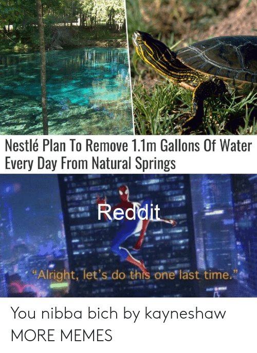 """nestle: Nestlé Plan To Remove 1.1m Gallons Of Water  Every Day From Natural Springs  Reddit  """"Alright, let's do this one last time. You nibba bich by kayneshaw MORE MEMES"""