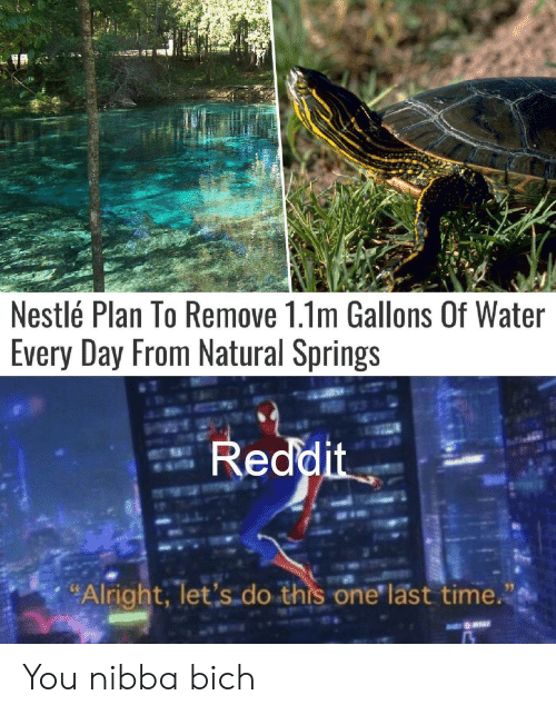 """nestle: Nestlé Plan To Remove 1.1m Gallons Of Water  Every Day From Natural Springs  Reddit  """"Alright, let's do this one last time. You nibba bich"""