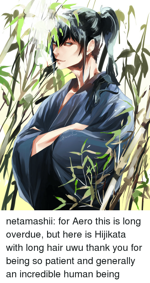 Aero: netamashii:  for Aero  this is long overdue, but here is Hijikata with long hair uwu thank you for being so patient and generally an incredible human being