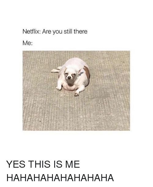 Hahahahahahahaha: Netflix: Are you still there  Me: YES THIS IS ME HAHAHAHAHAHAHAHA