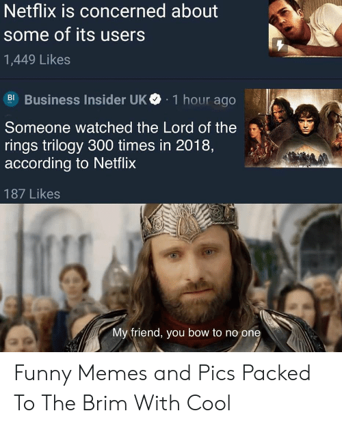 concerned: Netflix is concerned about  some of its users  1,449 Likes  Business Insider UK  1 hour ago  BI  Someone watched the Lord of the  rings trilogy 300 times in 2018,  according to Netflix  187 Likes  My friend, you bow to no one Funny Memes and Pics Packed To The Brim With Cool