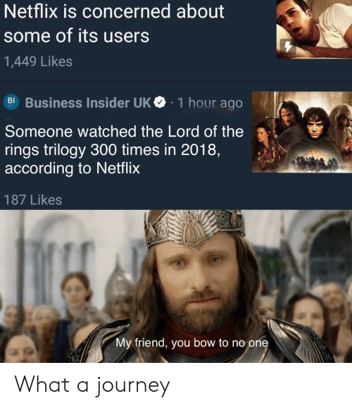 concerned: Netflix is concerned about  some of its users  1,449 Likes  BI Business Insider UK  1 hour ago  Someone watched the Lord of the  rings trilogy 300 times in 2018,  according to Netflix  187 Likes  My friend, you bow to no one What a journey
