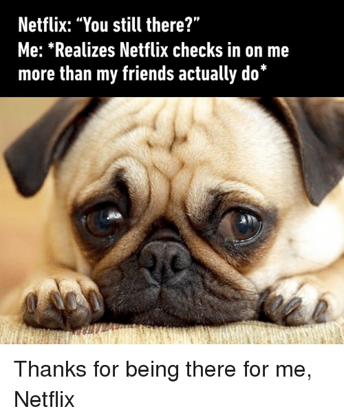 "Dank, Friends, and Netflix: Netflix: ""You still there?""  Me: *Realizes Netflix checks in on me  more than my friends actually do*  44  ■ Thanks for being there for me, Netflix"