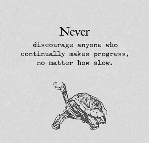 Never, How, and Who: Never  discourage anyone who  continually makes progress,  no matter how slow.