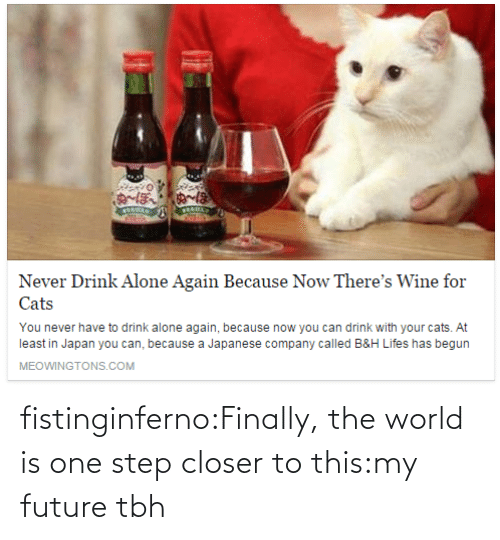 Has Begun: Never Drink Alone Again Because Now There's Wine for  Cats  You never have to drink alone again, because now you can drink with your cats. At  least in Japan you can, because a Japanese company called B&H Lifes has begun  MEOWINGTONS.COM fistinginferno:Finally, the world is one step closer to this:my future tbh