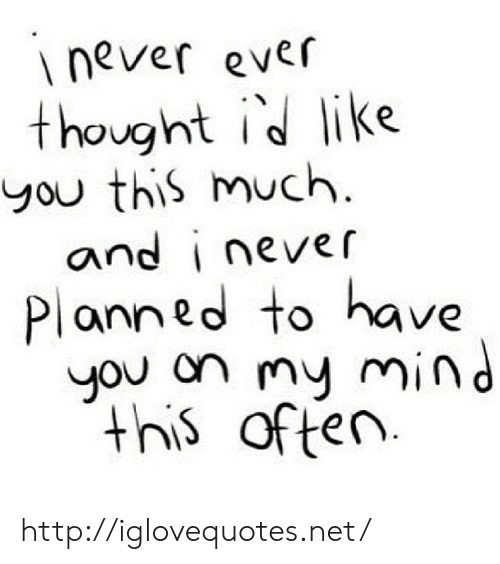 Http, Mind, and Never: never ever  thought id like  you this much  ovo  and inever  Planned to have  you on my mind  this often http://iglovequotes.net/