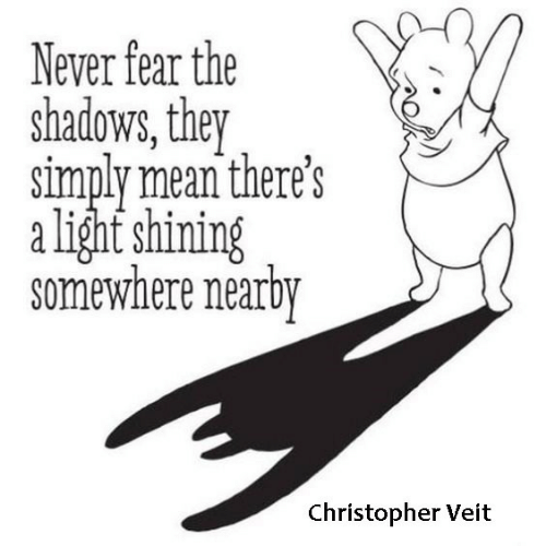 Mean, Fear, and Never: Never fear the  shadows, they  simply mean there's  alight shining  somewhere nearby  Christopher Veit