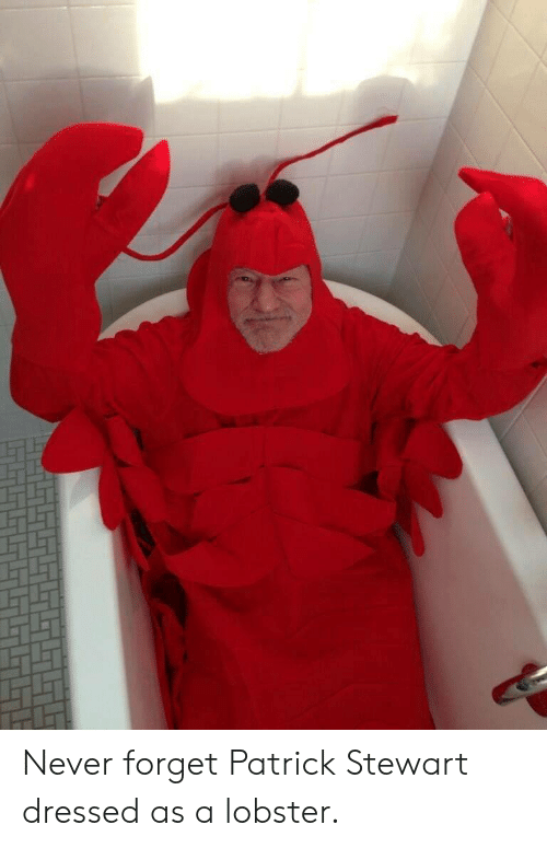 Never, Lobster, and Patrick Stewart: Never forget Patrick Stewart dressed as a lobster.