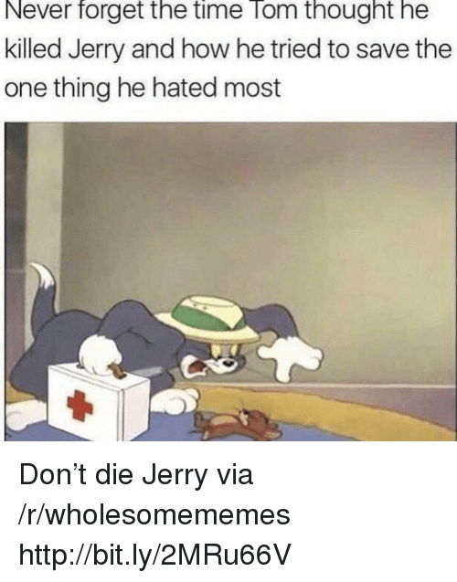 Http, Time, and Never: Never  forget  the  time  Tom  thought  he  killed Jerry and how he tried to save the  one thing he hated most Don't die Jerry via /r/wholesomememes http://bit.ly/2MRu66V