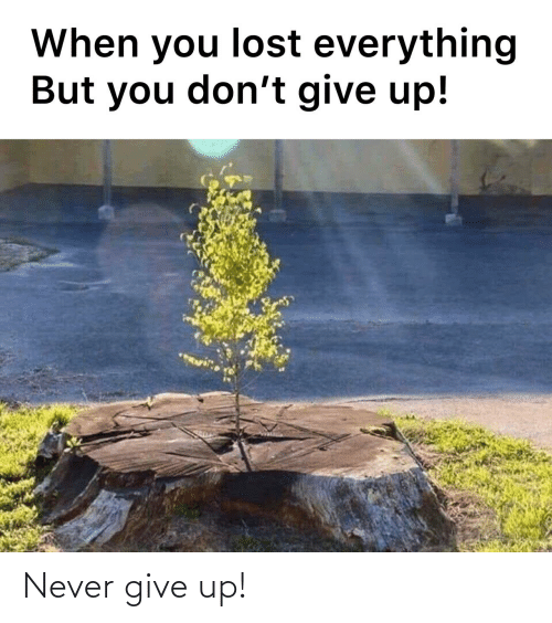 give up: Never give up!