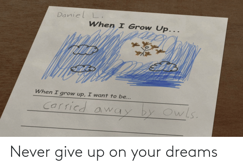 Never Give: Never give up on your dreams