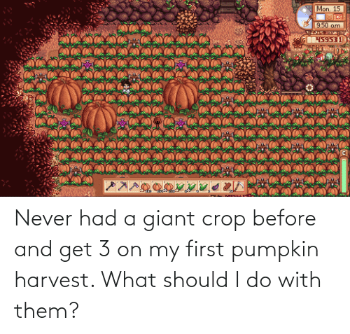 Pumpkin: Never had a giant crop before and get 3 on my first pumpkin harvest. What should I do with them?