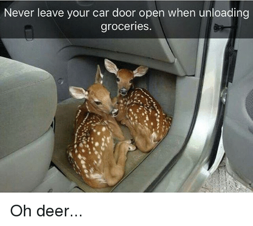 Dank, Deer, and Never: Never leave your car door open when unloading  groceries Oh deer...